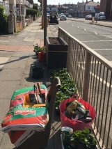 67 Promenade planters making up