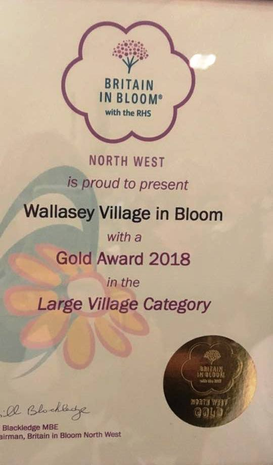235 2018 Gold Award Large Village Category